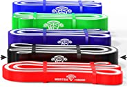 WODFitters Titanium Resistance Bands/Pull Up Bands - Heavy Duty Power Bands for Pull Up Assistance, Mobility Exercises, Work