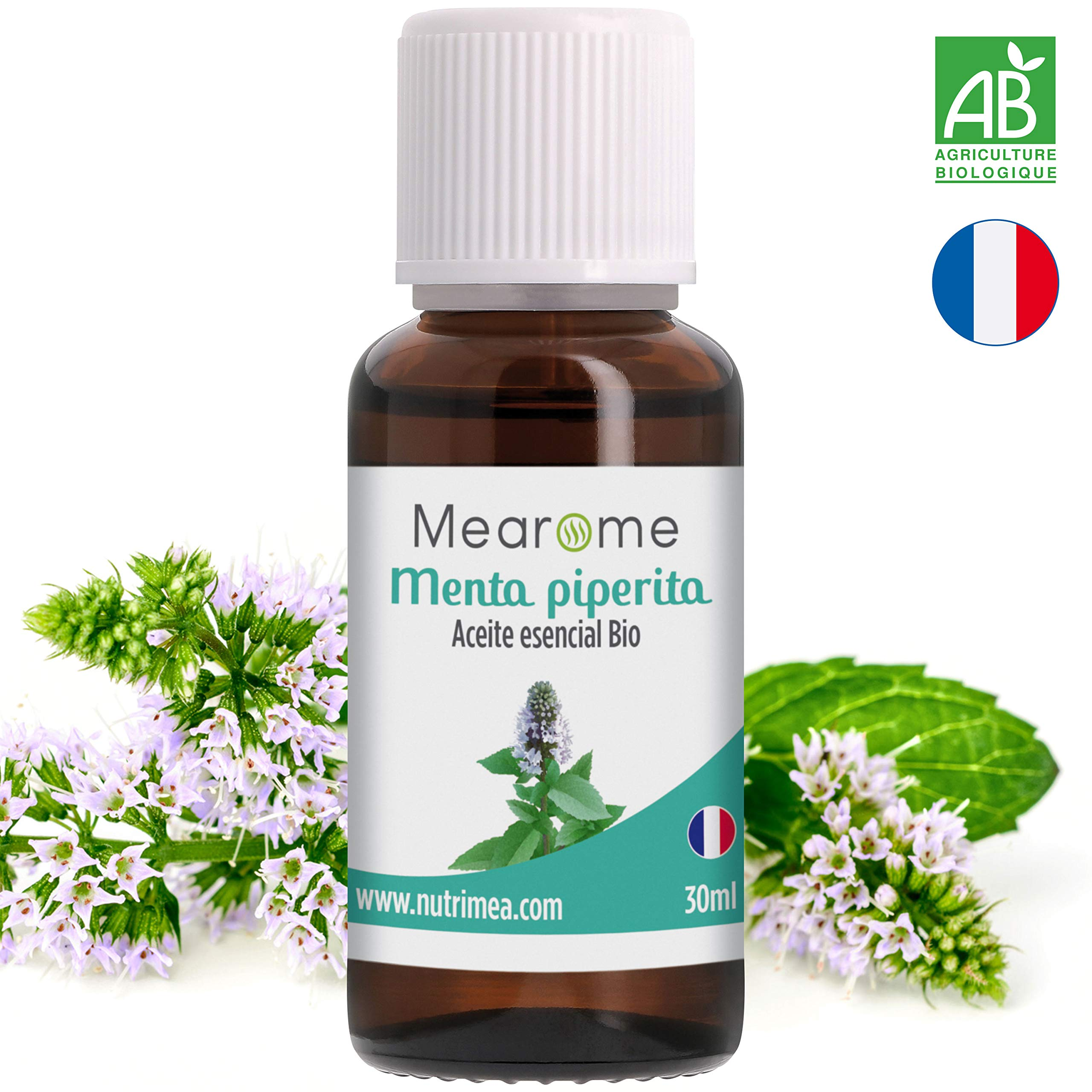Aceite Esencial De Menta Piperita Puro Aceite Esencial Bio 30ml Quimitipado Grado Terapéutico Ideal Humidificador Ultrasónico
