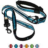Kurgo 6 in 1 Hands Free Dog Leash | Reflective Running Belt Leash for Dogs | Crossbody & Waist Belt Leash | Carabiner Clip |