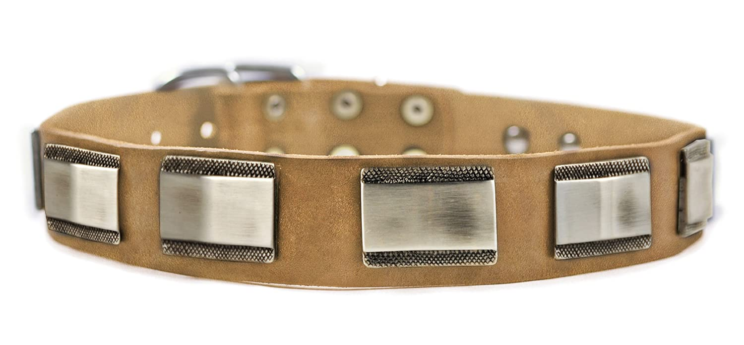 Dean and Tyler WHITE LIGHT , Leather Dog Collar with Beautiful Nickel Plates Tan Size 18-Inch by 1-1 2-Inch Fits Neck 16-Inch to 20-Inch