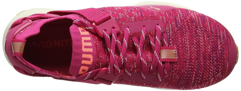 Puma Damen Damen Puma Ignite Evoknit Lo Vr Outdoor Fitnessschuhe d9f496