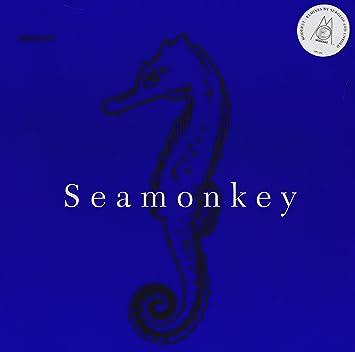 moderat seamonkey mp3