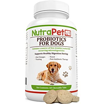 Amazon.com : Tummy Treats - Probiotics for Dogs - Safe All
