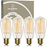 Vintage Incandescent Edison Light Bulbs: 60 Watt, 2100K Warm White Lightbulbs - E26 Base - 230 Lumens - Clear Glass - Dimmabl