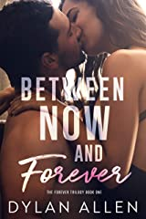 Between Now and Forever: A Second Chance Romance Kindle Edition