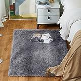 Yome Machine Washable Area Rug, Shaggy Home Decor Floor Rug, Carpet Overlocking on Edges, Ultra Soft Carpet for Bedroom, Livi