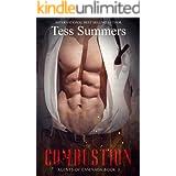 Combustion: Agents of Ensenada Book 2