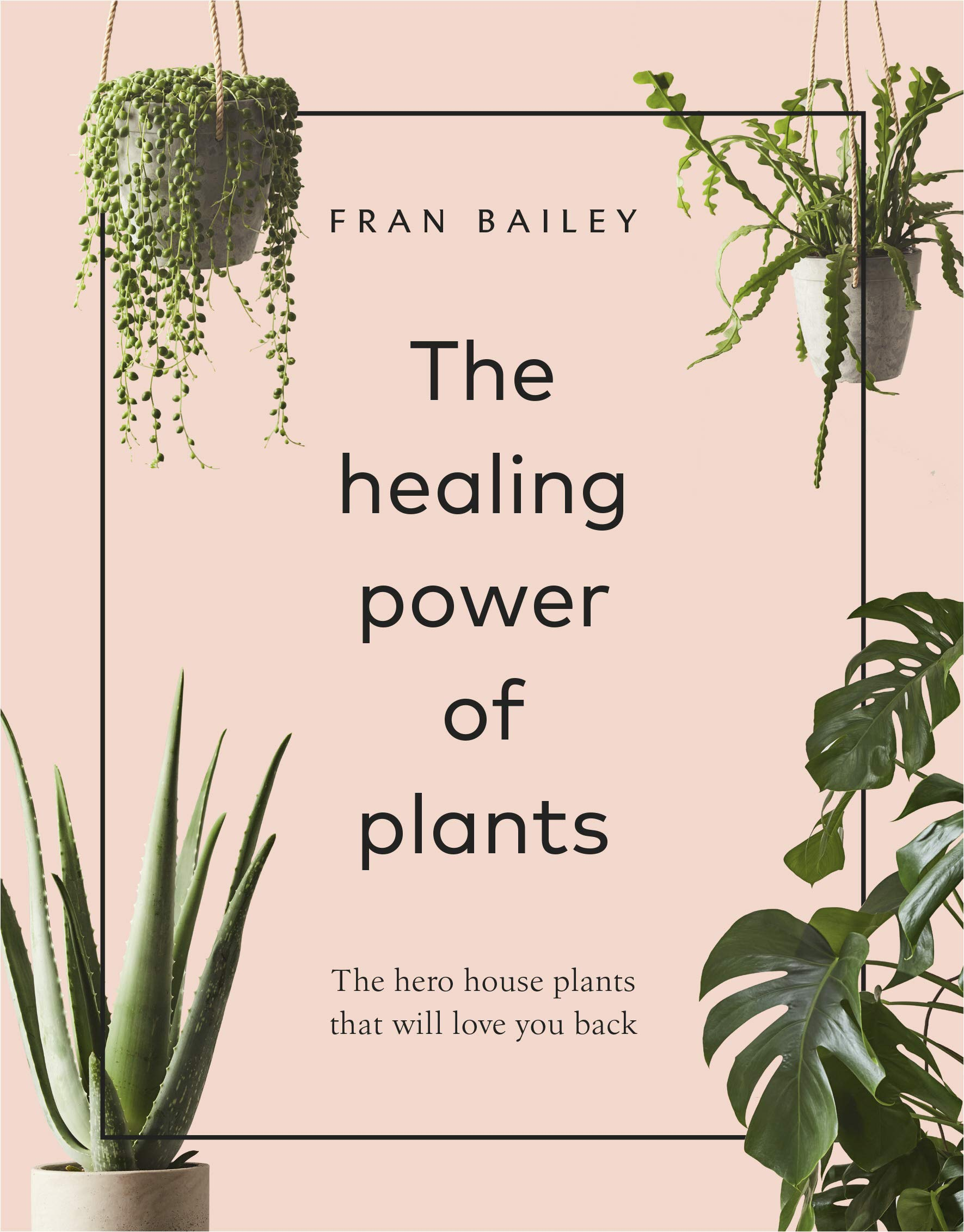 The Healing Power of Plants: The Hero House Plants that Love You Back:  Bailey, Fran: 9781529104066: Amazon.com: Books
