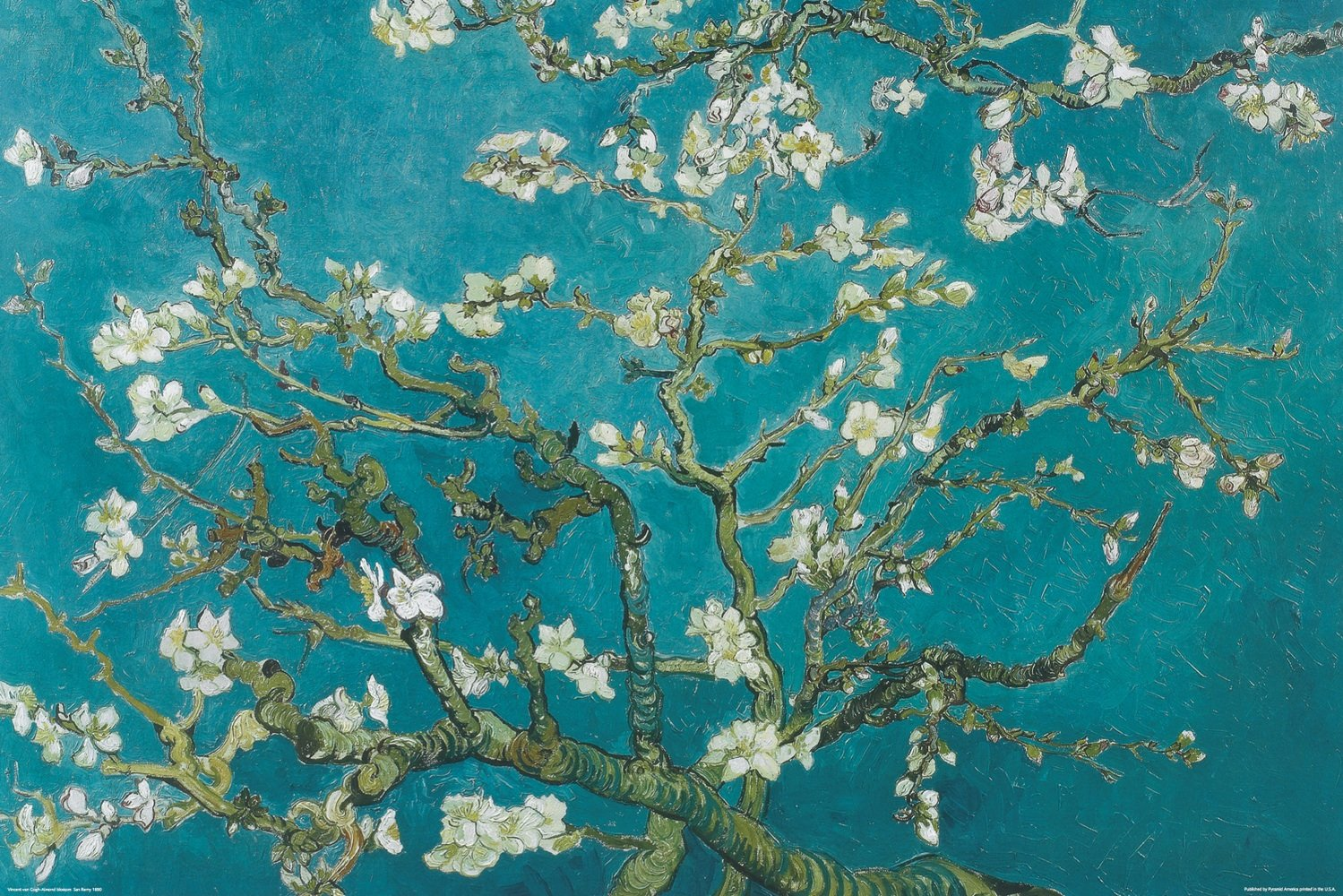 Amazon.com: Pyramid PAS0014 Almond Blossoms Decorative Poster ... for Almond Blossom Van Gogh Poster  575cpg