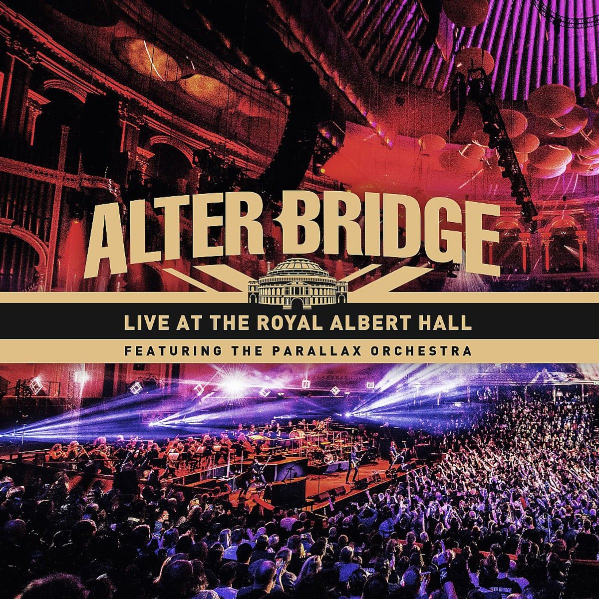 Blu-ray : Live At The Royal Albert Hall (With DVD, With CD, 5PC)