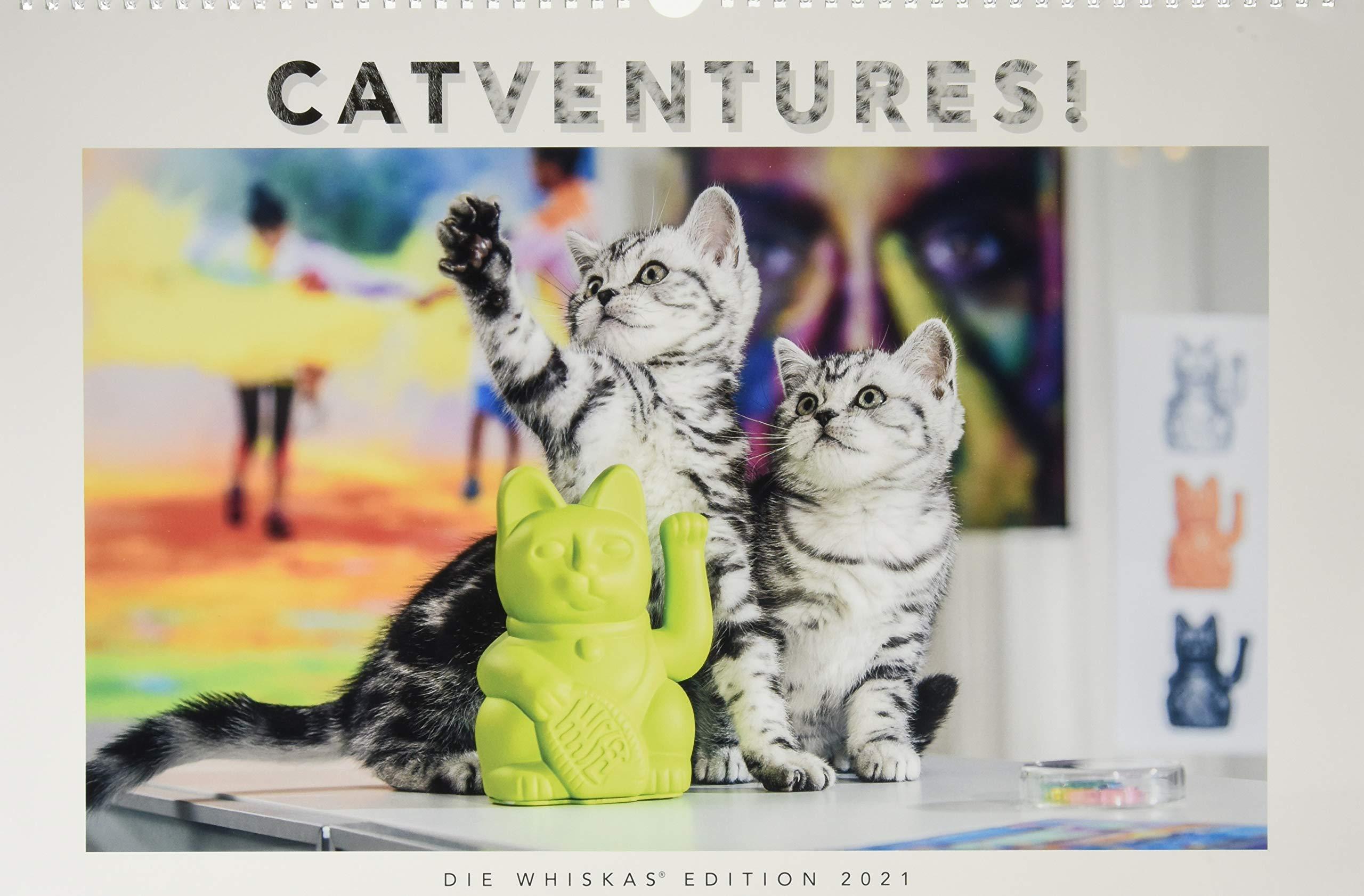 Amazon.fr   Whiskas Katzenkalender 2021: Jubileo!     Livres