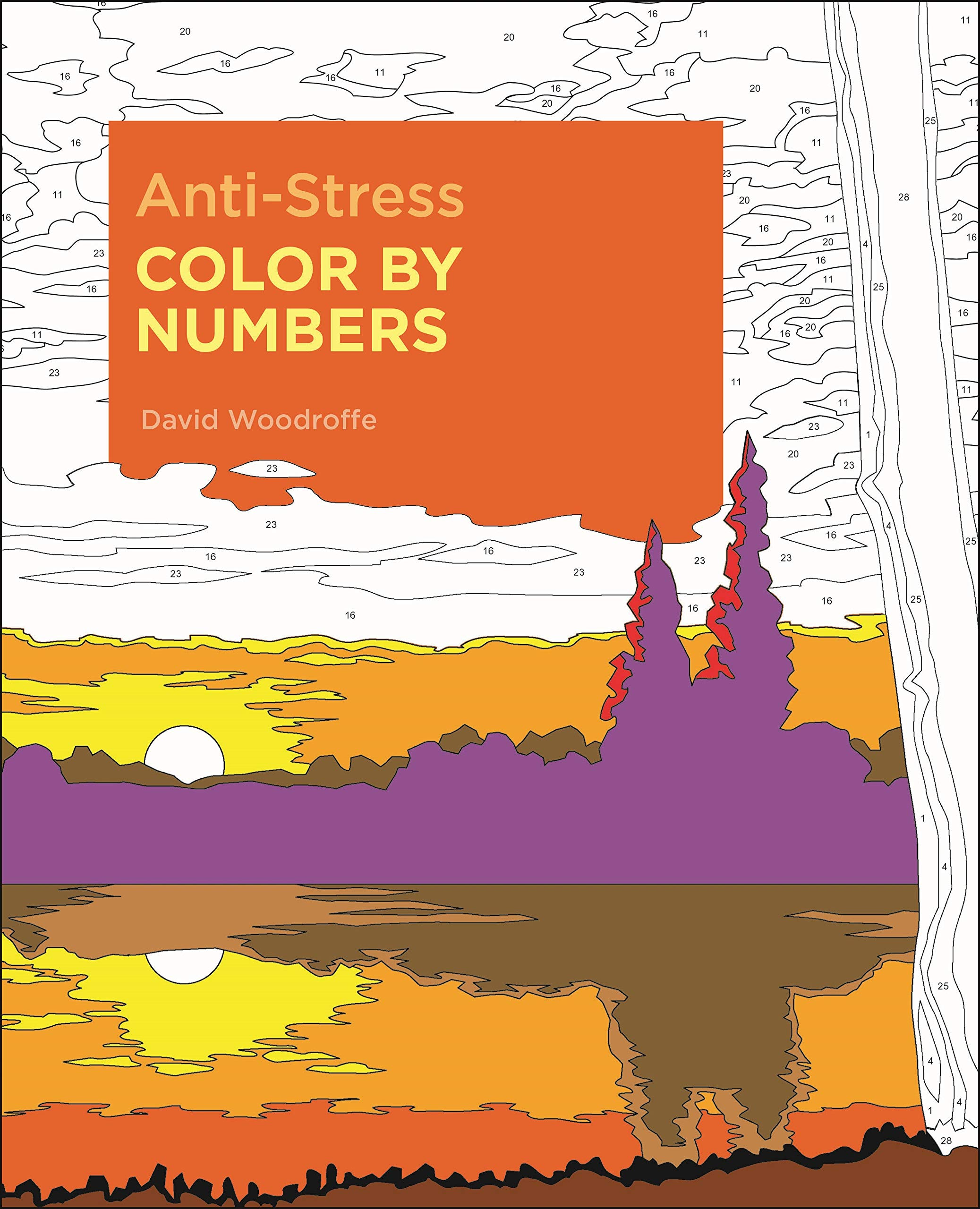 Amazon.com Anti Stress Color by Numbers Sirius Color by Numbers ...