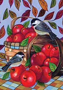 "Toland Home Garden Apple Basket Autumn Leaves Harvest Bird House Flag, House Flag (28"" x 40"")"