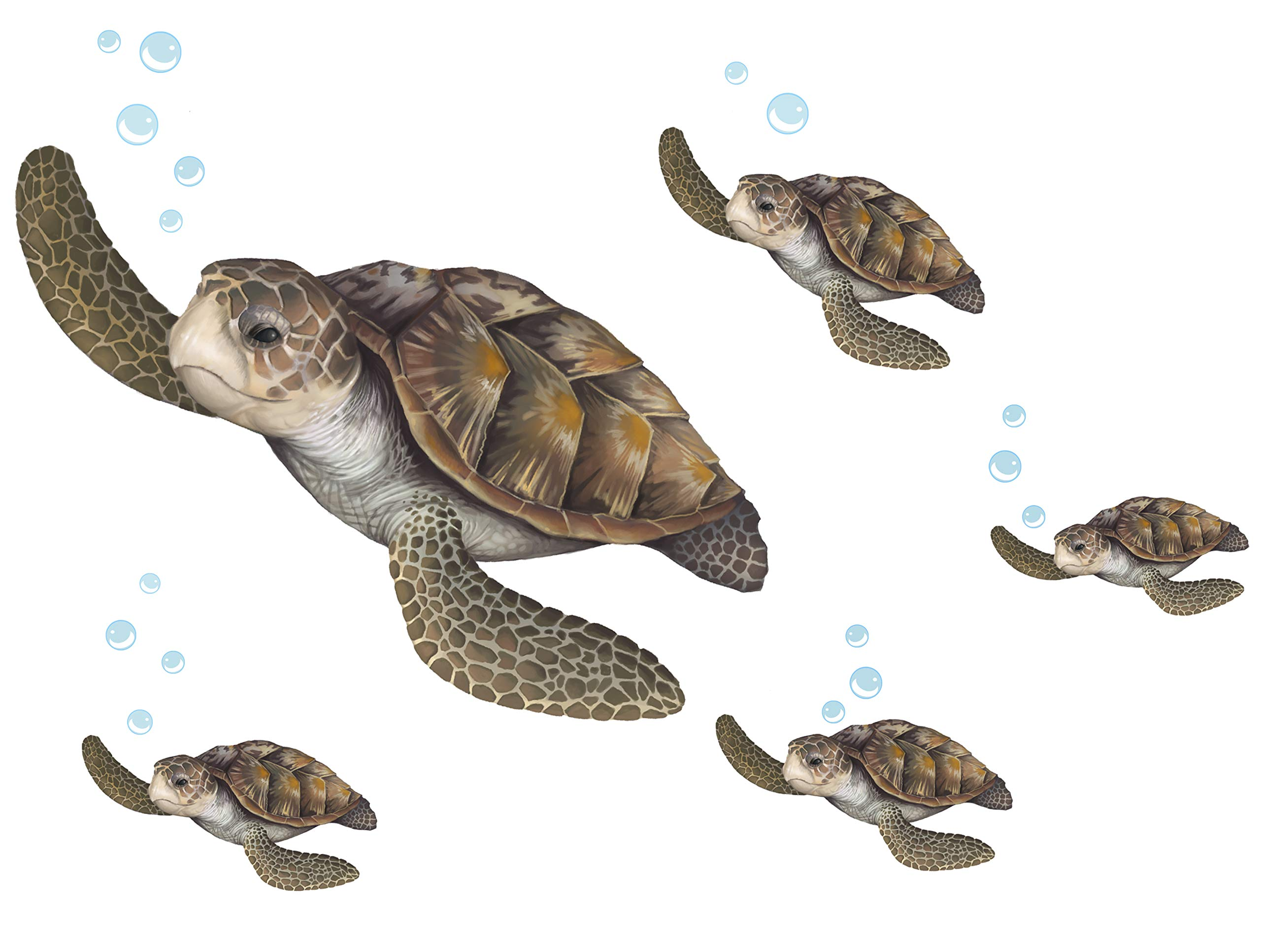 Create-A-Mural : Sea Turtle Family Wall Decals ~Under The Sea Decor Wall Stickers, Underwater Ocean Decals for Walls, Peel n Stick Room Decor by Create-A-Mural