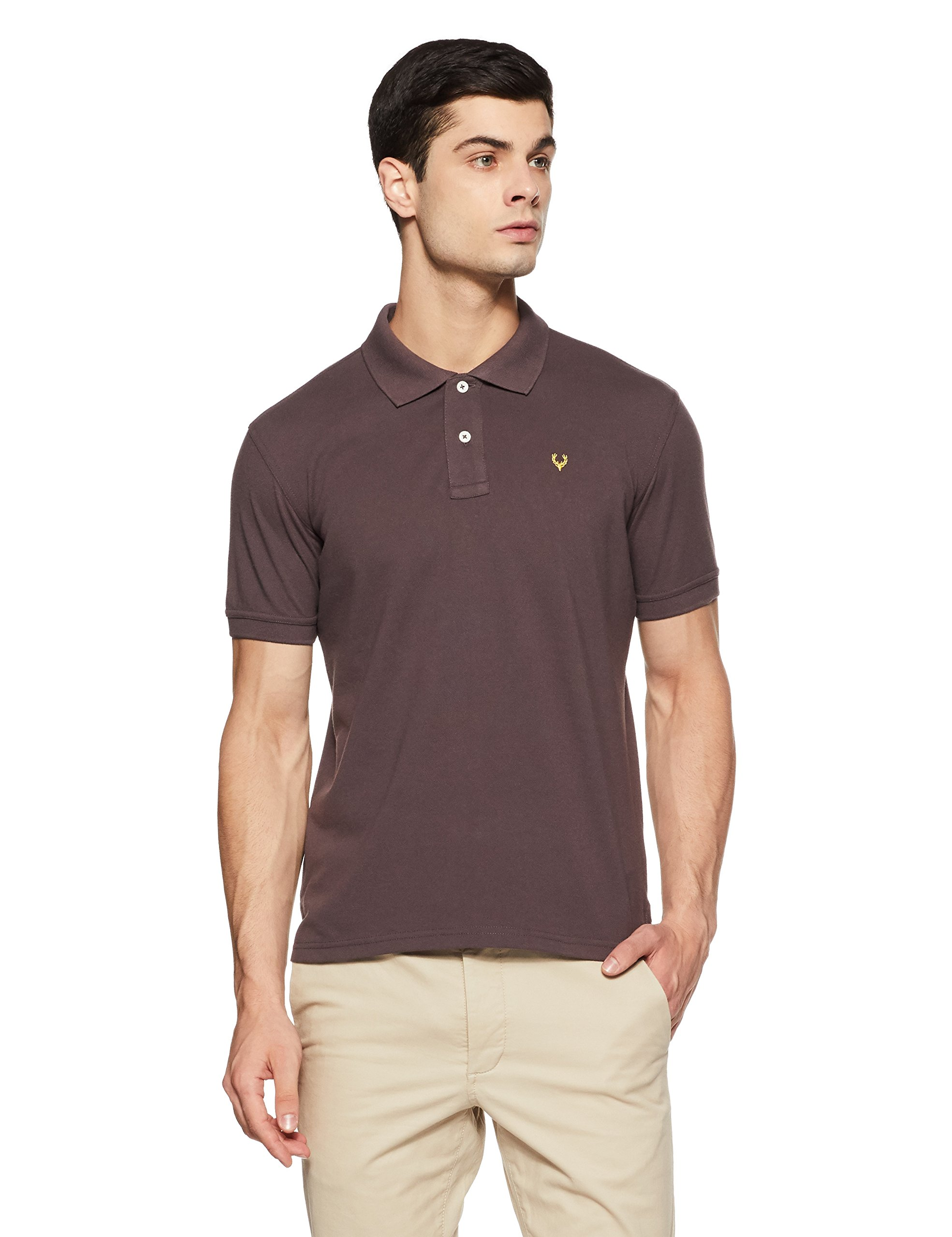 Allen Solly Men's Polo product image