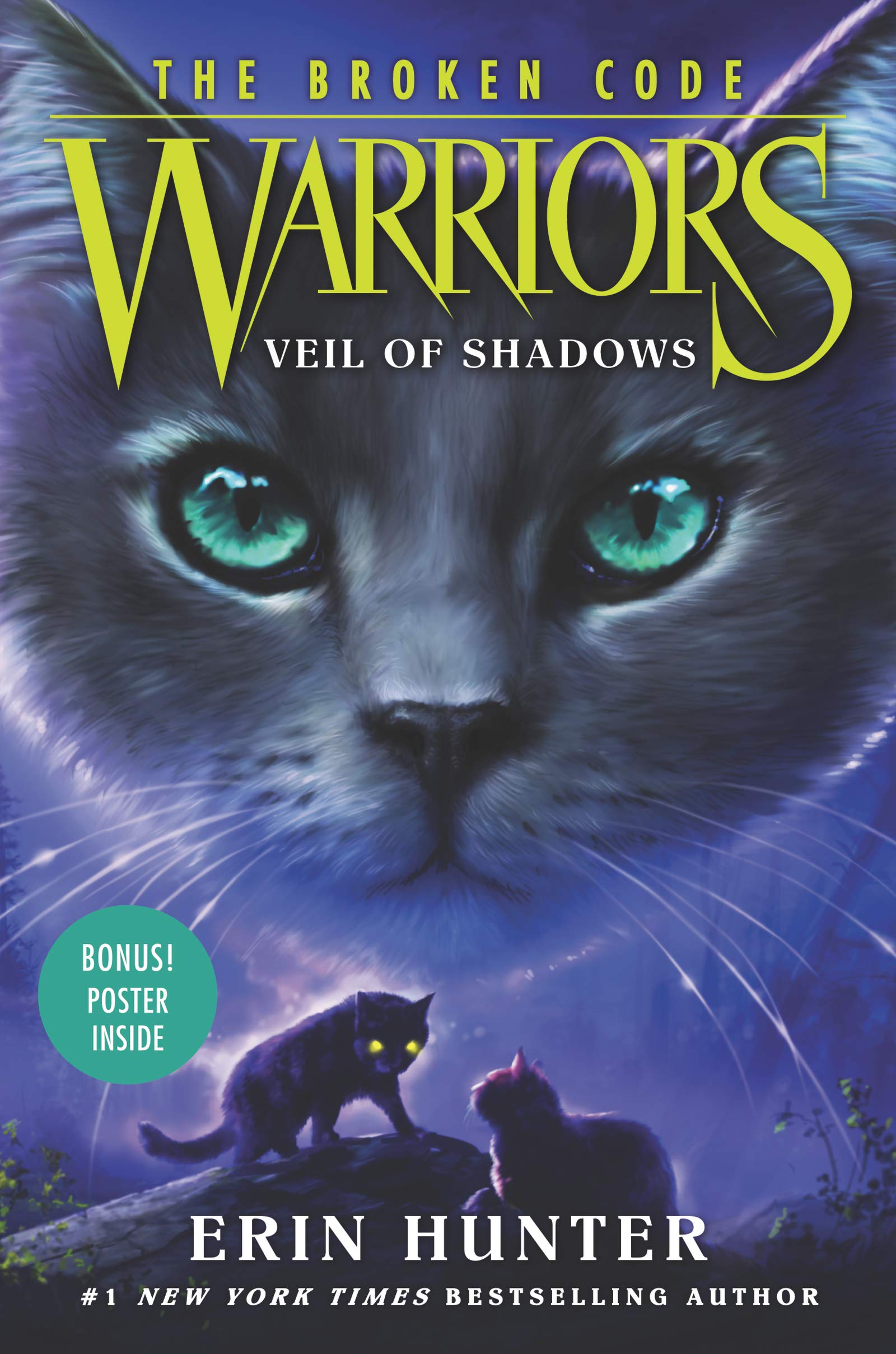 Warriors The Broken Code 3 Veil Of Shadows Hunter Erin 9780062823687 Amazon Com Books
