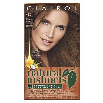 Amazon.com: Clairol Natural Instincts Semi-Permanent Hair Color Kit ...