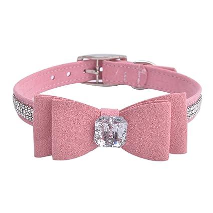boy dog collars