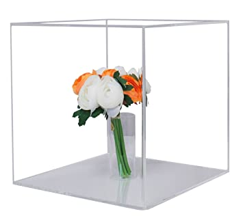 Amazon.com : Deluxe Clear Acrylic Wedding Bouquet Display Case ...