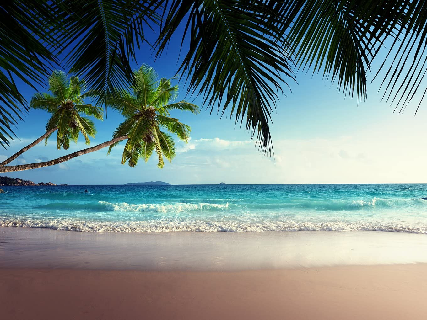 2x1.5m Gorgeous Tropical Summer Blue Sky Green Coconut Tree Leaves Beach Ocean Sea Holiday Tour Birthday Party Wedding Portrait Natural Scenery Backdrop Photography Background 388 DZJYQ 6.5x5ft
