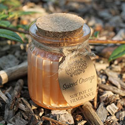 2x orange épicée de soja Pot de parfum Bougies