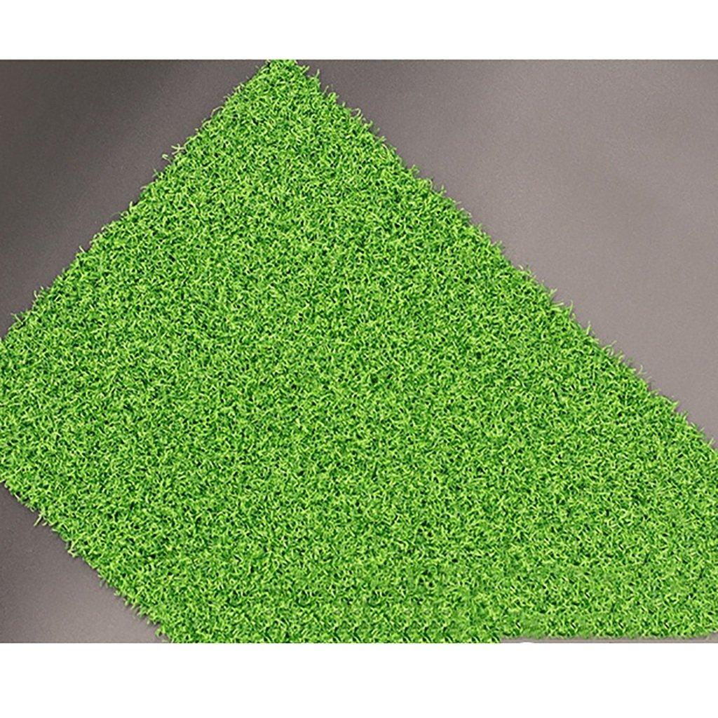 WENZHEゴルフパッティング練習マットグリーングラス高密度ワイド1/2メートル、グラスシルク長さ10mm(サイズ:1×5m)   B076M6656B