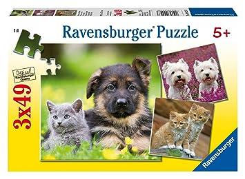 Ravensburger - Puzzle con diseño de gatos y perros, 3 x 49 piezas (09423 3)