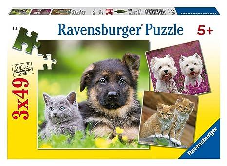 Ravensburger - Puzzle con diseño de gatos y perros, 3 x 49 piezas (09423