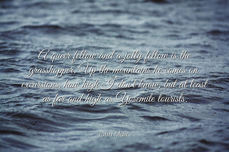 Amazon John Muir Famous Quotes Laminated Poster Print 24x20
