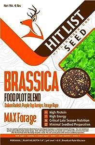 Brassica Blend Fall Food Plot Seed 1 Acre Daikon Radish, Purple Top Turnips, Forage Rape Deer Food Plot Seed