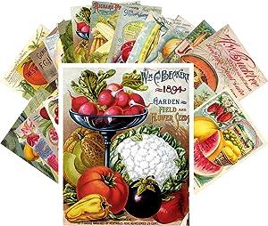 Postcard Set 24 cards Veges and Fruits Vintage Seed Pockets Gardens