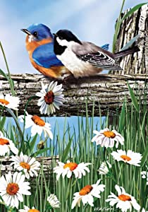 Spring Break Birds House Flag Bluebirds Chickadee Daisies 28