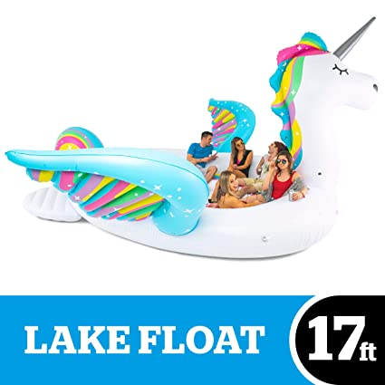 Amazon.com: BigMouth Inc. Giant Inflatable Unicorn Lake ...