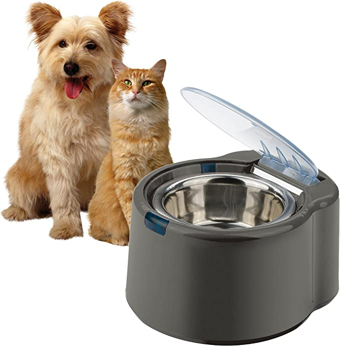 Our Pets Automatic Feeder Bowl