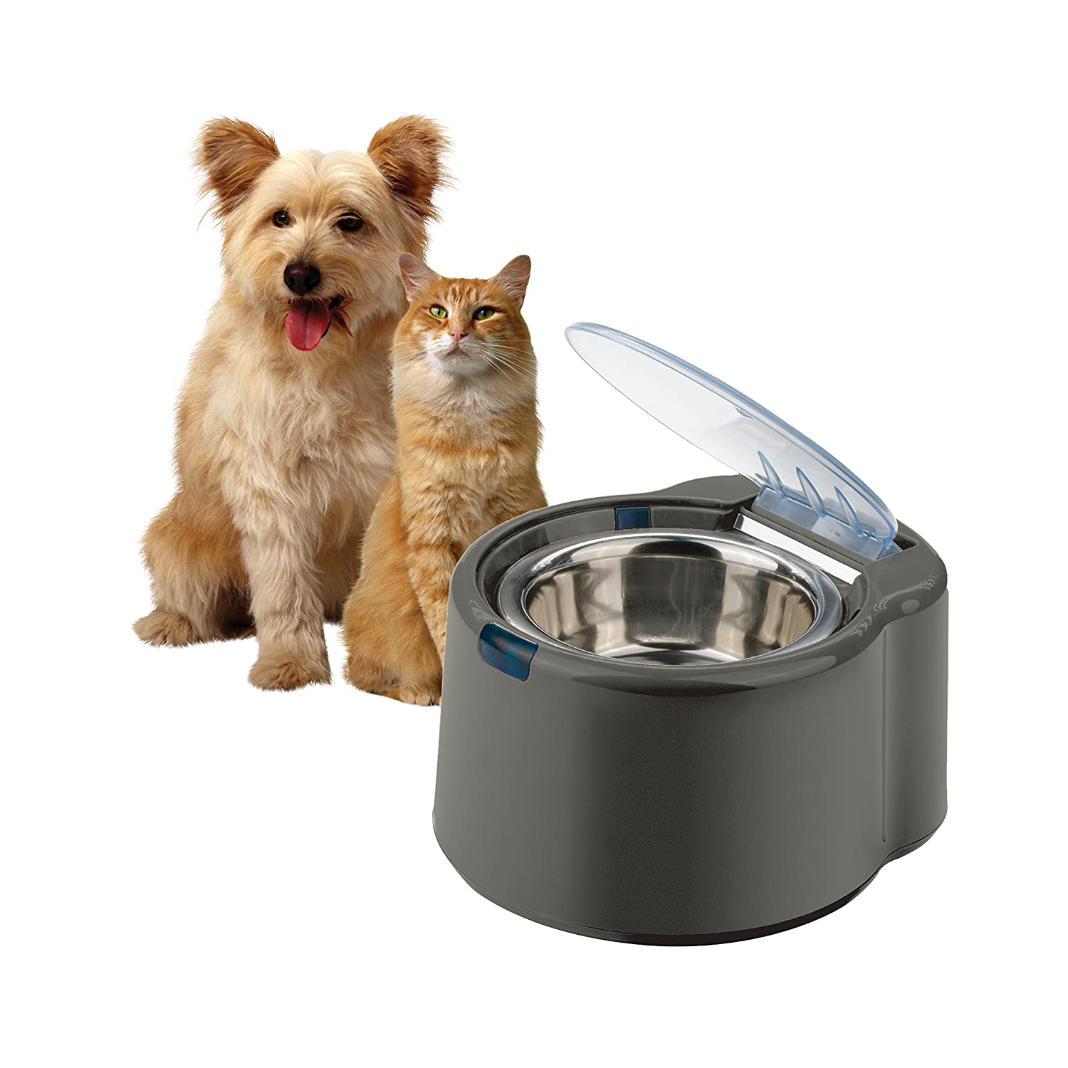 feed healthy for way bowl adapter dp dog supplies two splitter petsafe timer attachment pet simply feeder automatic