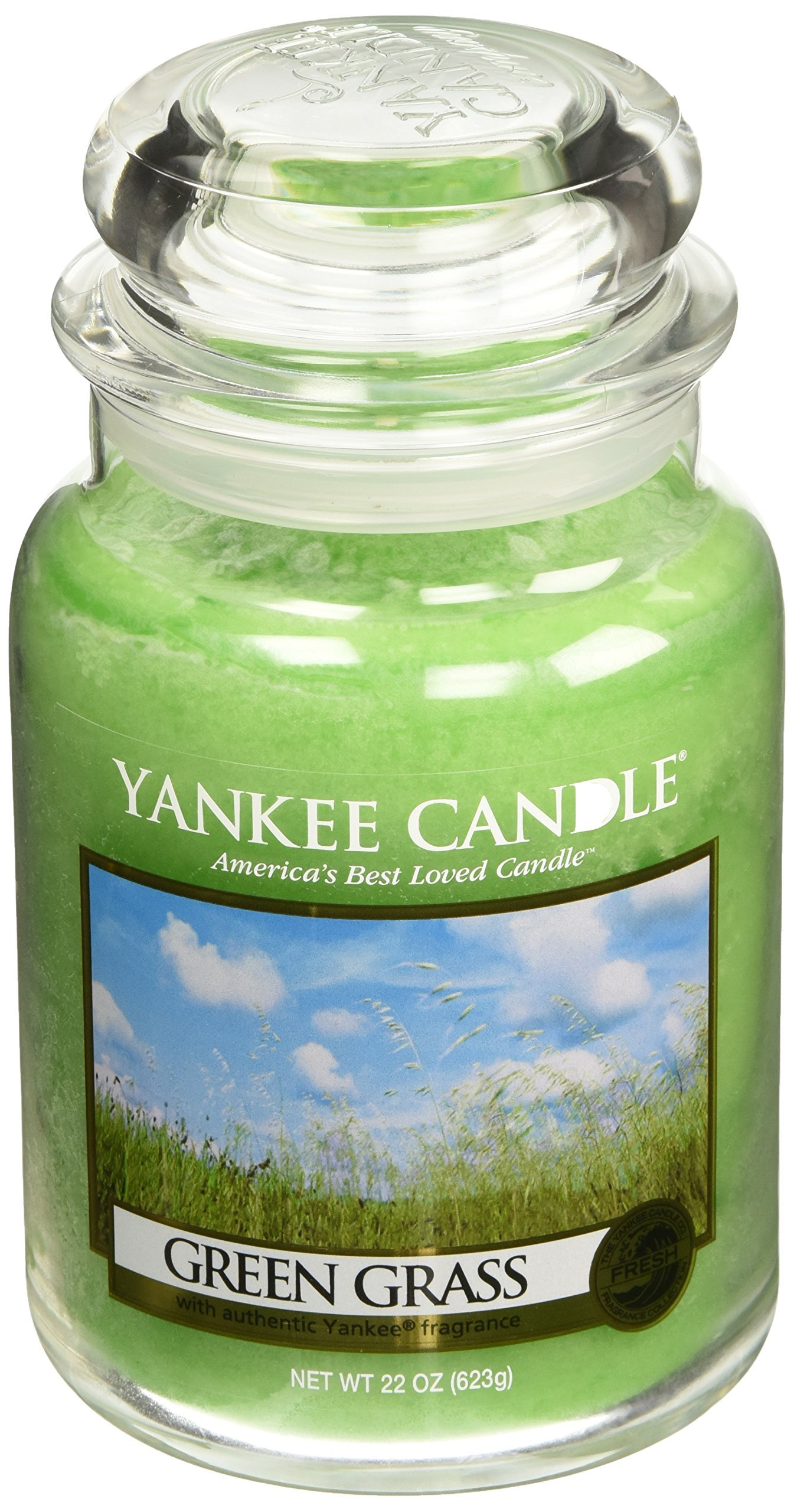 Yankee Candle Company Green Grass Large Jar Candle
