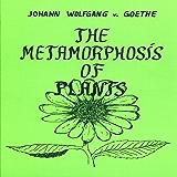 The Metamorphosis of Plants