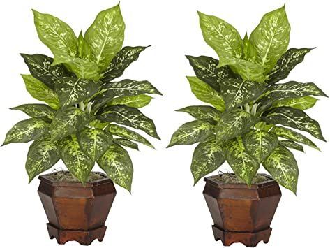 Green Nearly Natural 6720 Triple Golden Dieffenbachia Plant with Wood Vase