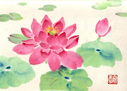Delicate Water Color Water Lotus By Sam Mitchell Lotus Flower