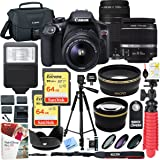 Canon T6 EOS Rebel DSLR Camera with EF-S 18-55mm f/3.5-5.6 IS II and EF 75-300mm f/4-5.6 III Lens and Two (2) 64GB Memory Cards Plus Triple Battery Accessory Bundle