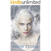 Snow Storm (Haven Hart Book 5)