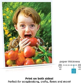 Amazon.com: Printworks 00426-6 - Papel fotográfico mate para ...