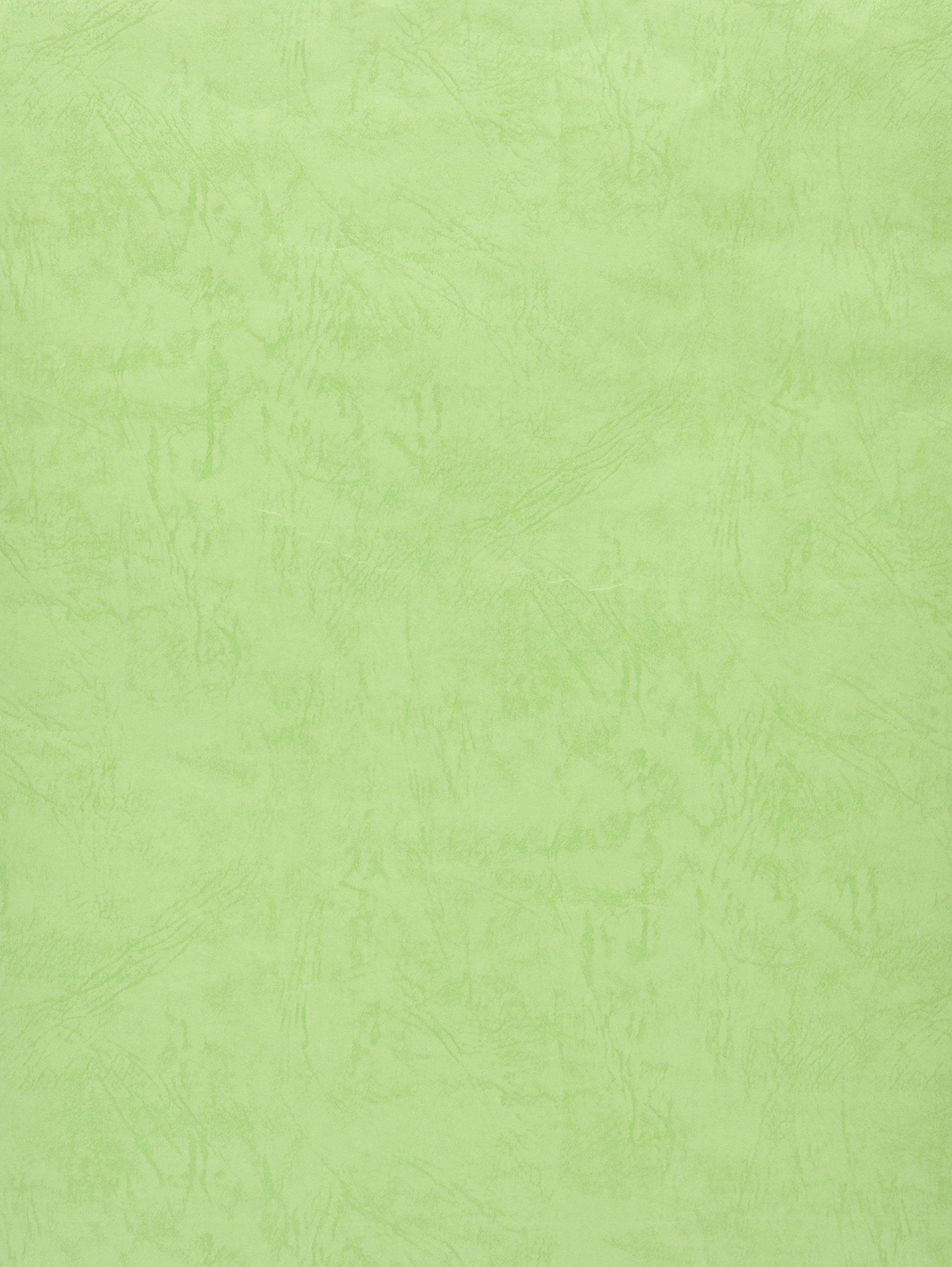 Okina plastic bag angle 2 Green VB2EG (japan import)