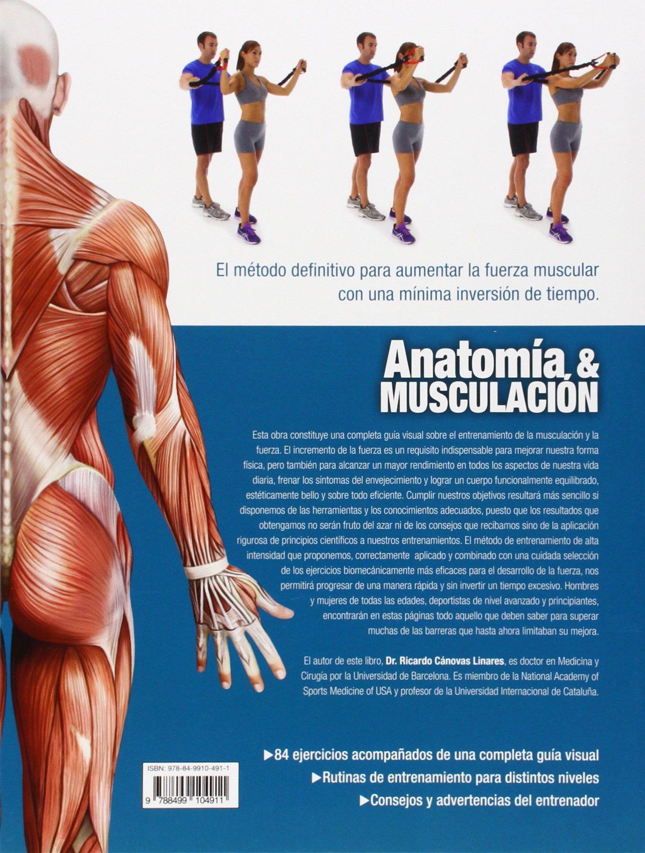 Anatomia y musculacion. Guia visual completa (Spanish Edition): Ricardo Canovas: 9788499104911: Amazon.com: Books
