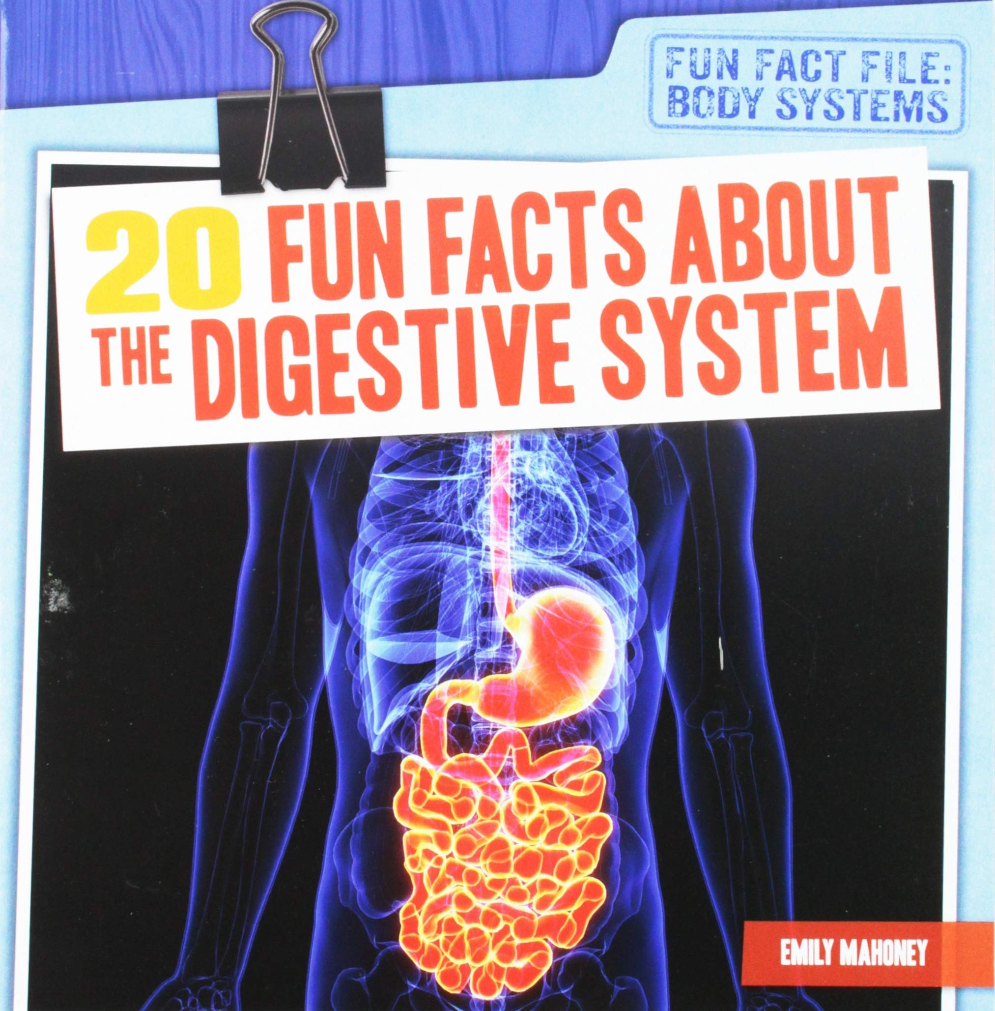 20 Fun Facts About The Digestive System Fun Fact File Body Systems