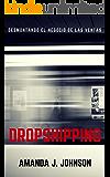 Desmontando el negocio de las ventas Dropshipping