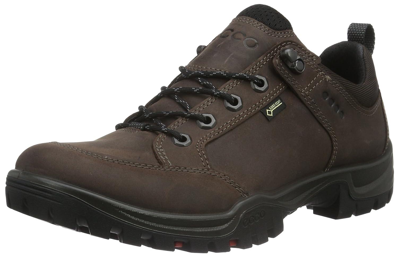 ECCO Mens Expedition III Low Gore-Tex Hiking Shoe Mocha 40 EU//6-6.5 M US ECCO Footwear 81125402178