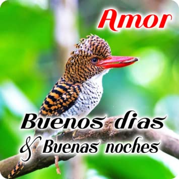 Amazoncom Spanish Good Morning Good Night Wishes Love Appstore