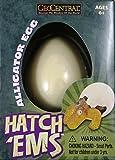 GeoCentral Hatch'em Alligator Egg Growing Pet