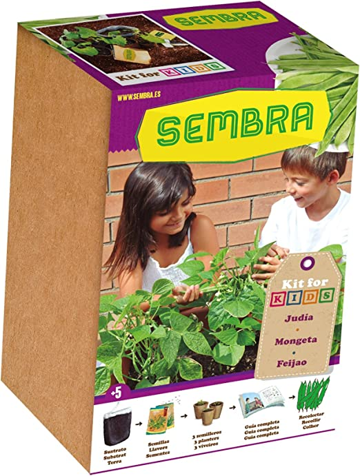 Sembra 9100 Set De Siembra Mis Judías, 34x9.5x23.3 cm: Amazon.es ...
